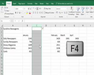 Insert a 2nd column using the F4 key